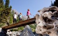 Swiss National Park Specials 2016